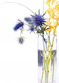 stock photo of flower arrangement  - An arrangement of funky spiky purple flowers and yellow flowers in a clear vase isolated on a white background - JPG