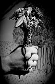 pic of ooze  - A young man squeezes his fist in a bouquet of dead flowers - JPG