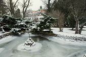 picture of tomas  - Topolcianky castle with frozen lake in winter - JPG