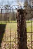 stock photo of cade  - A wire fence  - JPG