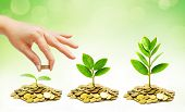 pic of coins  - hand giving coins to trees growing on piles of golden coins in germination sequence - JPG