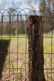 foto of cade  - A wire fence  - JPG