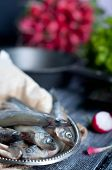 picture of plate fish food  - Fresh sardines. Fish with vegetables. Mediterranean fish on plate ** Note: Shallow depth of field - JPG