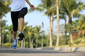 picture of jogger  - fitness jogger legs running at tropical park - JPG