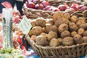 foto of farmers market vegetables  - Vegetarian diet  - JPG