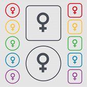 image of gender  - Symbols gender Female Woman sex icon sign - JPG