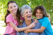 pic of extended family  - Extended family smiling and kissing in a park on a sunny day - JPG