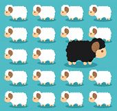 picture of sheep  - Black sheep different from the group of white sheep - JPG