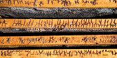 picture of beehives  - Image in close - JPG