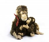 picture of baby-monkey  - toy Monkey with her sweet baby on white background - JPG