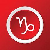 pic of capricorn  - Round white icon with zodiac symbol capricorn - JPG