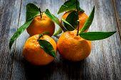 Постер, плакат: Fresh tangerines