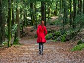 Young woman walking away alone on forest path wearing red long coat or overcoat. Girl back view of w poster