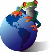 stock photo of red eye tree frog  - A conceptual illustration of a Red - JPG