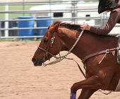 stock photo of barrel racing  - Barrel racer riding into the scene on brown horse - JPG