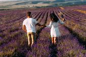 Loving Couple Holding Hands On Lavender Fields. Happy Couple On Flower Fields Rear View. Man And Wom poster