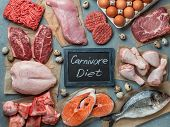 Carnivore Diet Concept. Raw Ingredients For Zero Carb Diet - Meat, Poultry, Fish, Seafood, Eggs, Bee poster