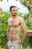 Portrait Of Handsome Hairy Shirtless Man Standing In Garden poster
