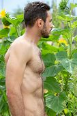 Handsome Shirtless Hairy Man Standing Outdoors In Garden poster