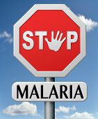 stock photo of malaria parasite  - stop malaria by prevention treatment with pills or mosquito nets good diagnosis for symptoms and insect repellent and net avoids bite and infection with parasite - JPG