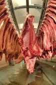 Постер, плакат: Свежее мясо в фабрике холодной резки