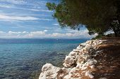 picture of peen  - View from the island Sveti Grgur Croatia - JPG