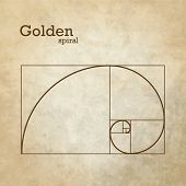 pic of fibonacci  - Golden proportion - JPG