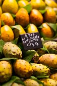 foto of siddhartha  - A photo of Cactus fruits on a market - JPG