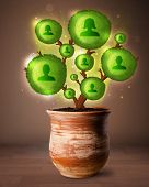 Shining social network tree coming out of flowerpot