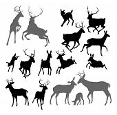 picture of deer family  - Silhouette Deer including fawn doe bucks and stag - JPG