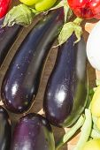 picture of brinjal  - Eggplant Brinjal Vegetable Closeup on sun light - JPG