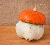 Decorative Pumpkin (cucurbita Pepo) On A Wooden Table