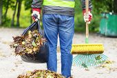 image of sweeper  - Man with brush and rake collects leaves - JPG