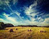 Vintage retro hipster style travel image of Agriculture background - Hay bales on field in summer wi