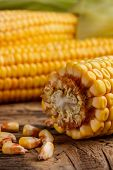 image of corn cob close-up  - Close up of corn cobs on wooden background - JPG