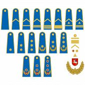 ������, ������: Lithuanian Air Force Insignia