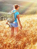 foto of fall-wheat  - Woman in golden wheat field in sunset - JPG