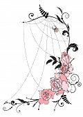 pic of spiderwebs  - vector illustration with flowers of roses and spiderweb - JPG