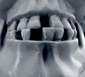 foto of hayride  - Gruesome halloween teeth - JPG