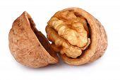 stock photo of nutrients  - Single Cracked Walnut isolated on white background - JPG
