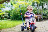 pic of four-wheel drive  - Active blond kid boy driving tricycle or bicycle in domestic garden - JPG