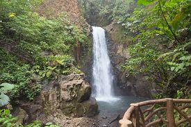 foto of rainforest  - Distant view of La Paz Waterfall amongst the rainforest - JPG