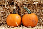 picture of fall decorations  - a pair of pumpkin with hay for Fall decoration - JPG