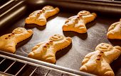 picture of oven  - Baking Gingerbread man in the oven - JPG