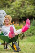 stock photo of wheelbarrow  - Happy senior couple playing with a wheelbarrow in a sunny day - JPG