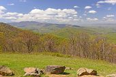 stock photo of virginia  - Spring Starting to Move up the Mountains in Shenandoah National park in Virginia - JPG