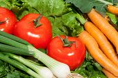 pic of farmers market vegetables  - Collection of fresh vegetables from the farmers - JPG