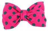 stock photo of bow tie hair  - Hair bow tie pink with blue dots - JPG