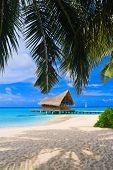 image of kuramathi  - Diving club on a tropical island  - JPG