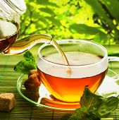 stock photo of black tea  - Tea - JPG